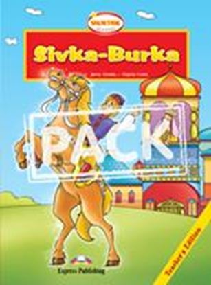 Εικόνα της SIVKA BURKA T'S BOOK WITH MULTI-ROM PA L