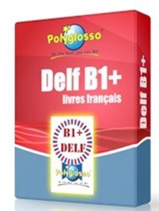 Εικόνα της DELF B1+