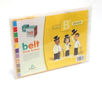 Εικόνα της Belt Study System Pack B Senior