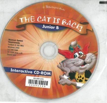 Εικόνα της The Cat is Back! Junior B Flashcard Book
