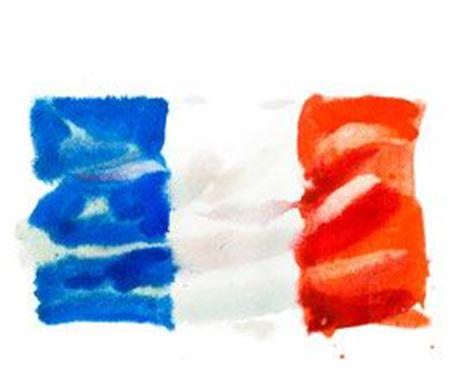 Εικόνα για την κατηγορία Γαλλικά
